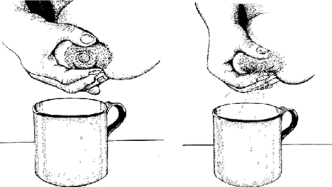 cara memerah asi dengan tangan di kantor 1