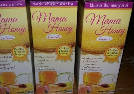 jual asi booster tea pelancar asi alami murah harga grosir di palembang