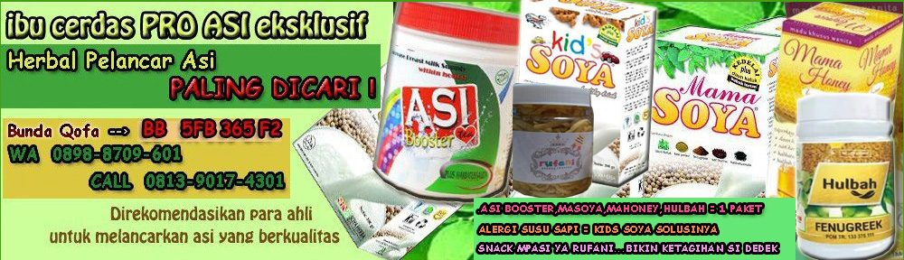 ASI BOOSTER TEA — MAMA  SOYA —  MAMA HONEY – HULBAH FANUGREEK – KIDS SOYA – SNACK MPASI